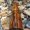 het kostbare letterhout
