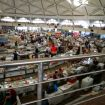 Market hall with raw meat (2)